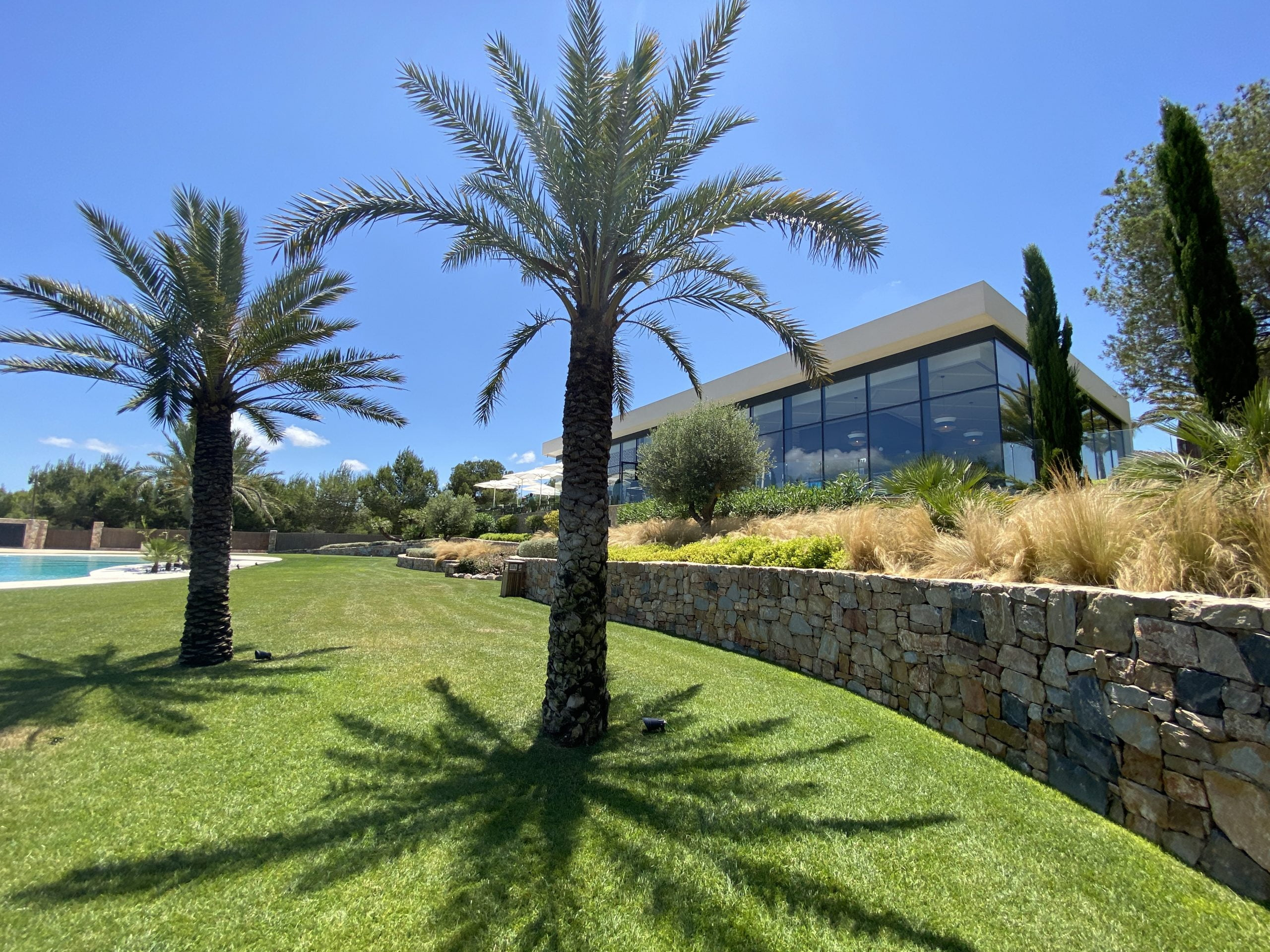 las colinas golf and country club - palm trees - las colinas property for sale